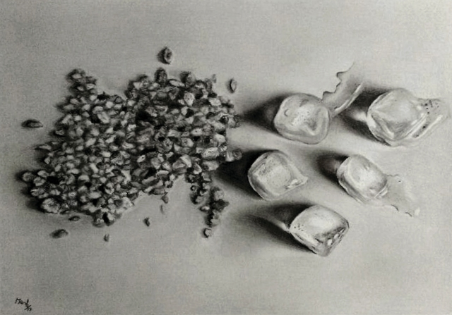 Chimica della fragilita di Roberta Maola